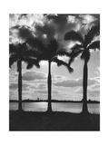 Hawaii  1930