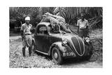 Großwildjäger mit zwei erlegten Tigern  1939