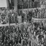 Soldiers of the US 143rd Infantry Cheer Italy's Unconditional Surrender to Allied Nations