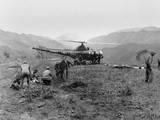 US Navy Corpsmen Prepare Three Marines for Evacuation Evacuated Via Helicopter
