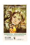 Green Mansions  Audrey Hepburn  Anthony Perkins  1959
