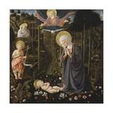 Adoration of the Child  Filippo Lippi Workshop  1475-1500