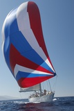 Sailing Boat in Yacht Race