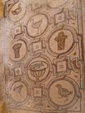 Late Roman Pavement Mosaic of Baskets and Birds in Fortress of Al-Hallabat  4th C Jordan