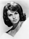 The Glory Guys  Senta Berger  1965