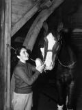 National Velvet  Elizabeth Taylor  1944