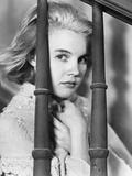 Baby Doll  Carroll Baker  1956