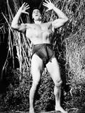 Tarzan's Fight for Life  Gordon Scott  1958