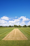 Cricket Field Background