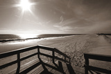 Bronze Beach III