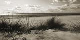 Rolling Dunes IV