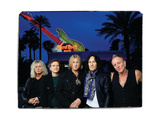 Def Leppard - Viva! Hysteria Live at the Hard Rock 2013