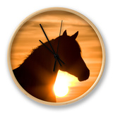 Silhouette of Wild Horse Mustang Pinto Mare at Sunrise  Mccullough Peaks  Wyoming  USA