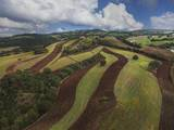 Working a Field near Manciano  Air View by Drone