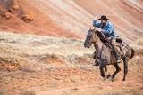 Cowboy at Full Gallop