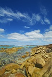 Coast Landscape near Elephant Rocks