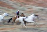 Cowboy at Full Gallop in Motion