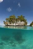 Small Island off Palau  Micronesia