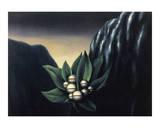 Les Fleurs de l'Abi^me 1  c1928