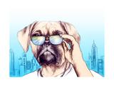 Dog in Glasses Fashion Animal  Illustration