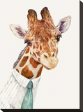 Mr Giraffe