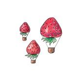 Strawberrys Fly
