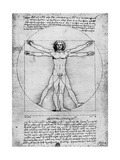 Proportions of the Human Figure  C1492