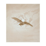 Owl Flying Against a Moonlit Sky  1836-1837