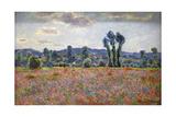 Poppy Field  1887