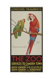 The Zoo  London County Council (Lc) Tramways Poster  1932