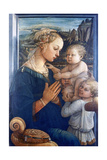 Madonna and Child with Angels  C1455