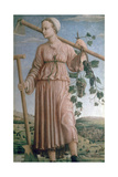 Allegory of Autumn  15th Century
