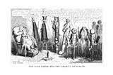 The Sick Goose and the Council of Health  19th Century