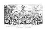 Capricornus - a Caper-O'-Corns  19th Century