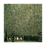 Park, 1910 Reproduction d'art par Gustav Klimt