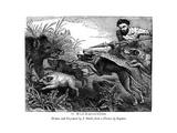 Wild Boar Hunting  C1600-1650