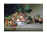 Abundance of Fruit  C1820