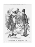 Cave Canem  or Dog (Berr) Law  1867