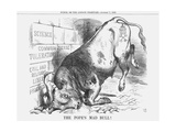 The Pope's Mad Bull  1865