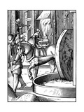 The Manufacture of Oil  16th Century