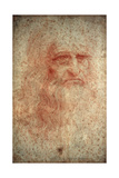 Self Portrait of Leonardo Da Vinci  Italian Painter  Sculptor  Engineer and Architect  C1513