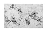 Study for the Battle of Anghiari  C1503-1505