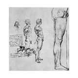 Nude Studies for 'The Battle of Anghiari  C1503-1505