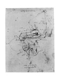 Study in Proportion of a Horse's Leg, Late 15th or Early 16th Century Giclée par Leonardo Da Vinci