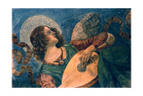 An Angel Playing the Lute  15th Century