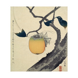 Moon  Persimmon and Grasshopper  1807