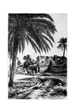 A Street in Biskra  Algeria  1895