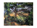 A Big Pine Tree Near Aix  1895-1897