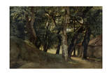 Forest of the Villa Borghese  Late 18Th/Early 19th Century