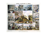 Crustacea and Reptiles  C1850